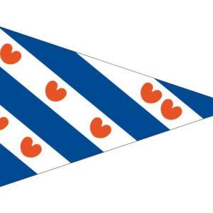 Friese puntvlag